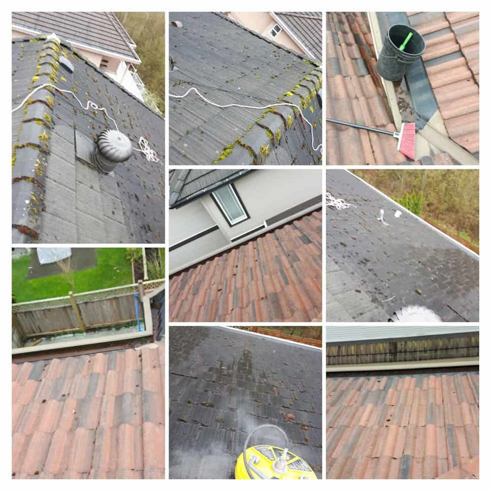 Roof Cleaning and Moss Removal Services